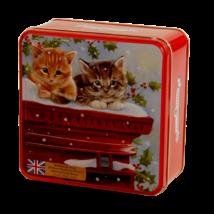 Grandma Wild's -Kittens on a Post Box Tin (Cicák a postaládán fémdoboz vajas és csokis keksszel) 160g