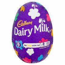 Cadbury Cadbury Dairy Milk Easter Egg 77g